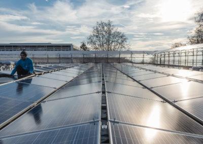 """Centre sportif de la Vallée de la Jeunesse, CSVJ, assainissement énergétique d'un bâtiment construit selon le système """"CROCS"""" à Lausanne. Champs de capteurs photovoltaiques produisant environ 130 000 kWh/an, soit l'équivalent de la consommation annuelle de quelque 40 ménages."""